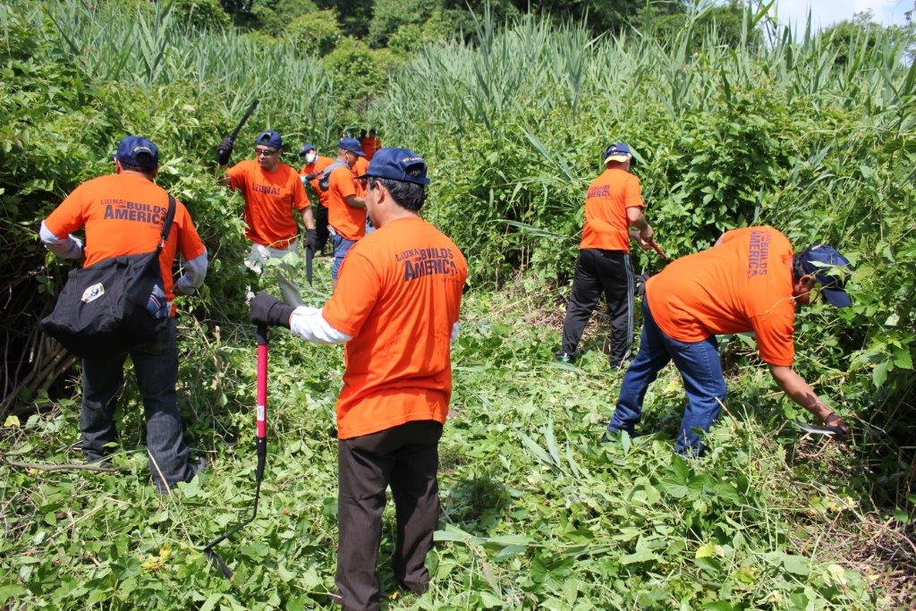 Local 79 workers wielding machetes to maintain a trail at Flushing Meados Corona Park